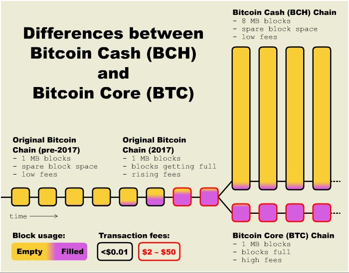 Bitcoin and Bitcoin Cash