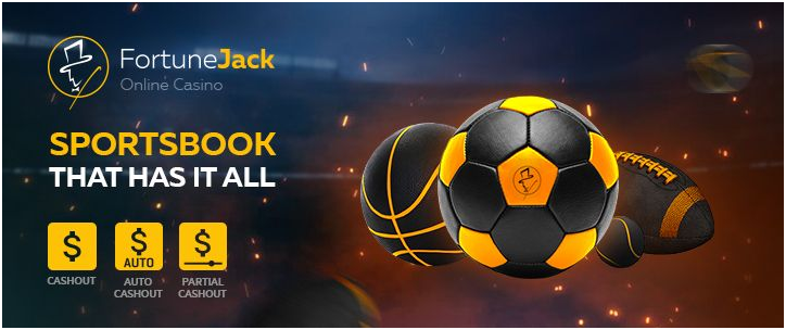 What is Bitcoin Sportsbook and how to find one?